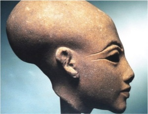 nefertiti statue showing elongated skull