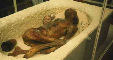 Early Kamitic Mummies