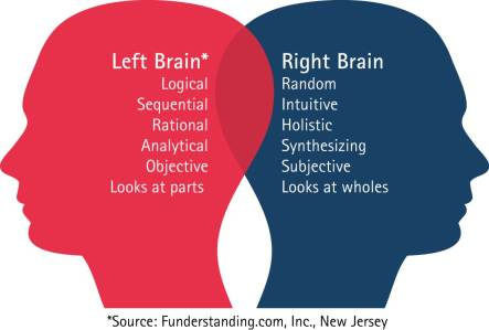 Right and Left Hemispheres