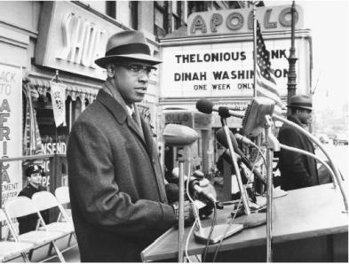 http://www.filmreference.com/Films-Le-Ma/Malcolm-X.html